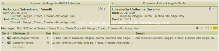 Family Tree - Amrogio Painelli, Elisabetta (Elisa) Serafini