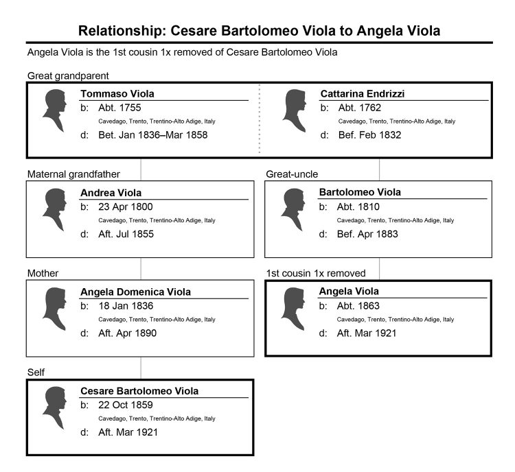 Relationship chart of Cesare Viola and Angela Viola