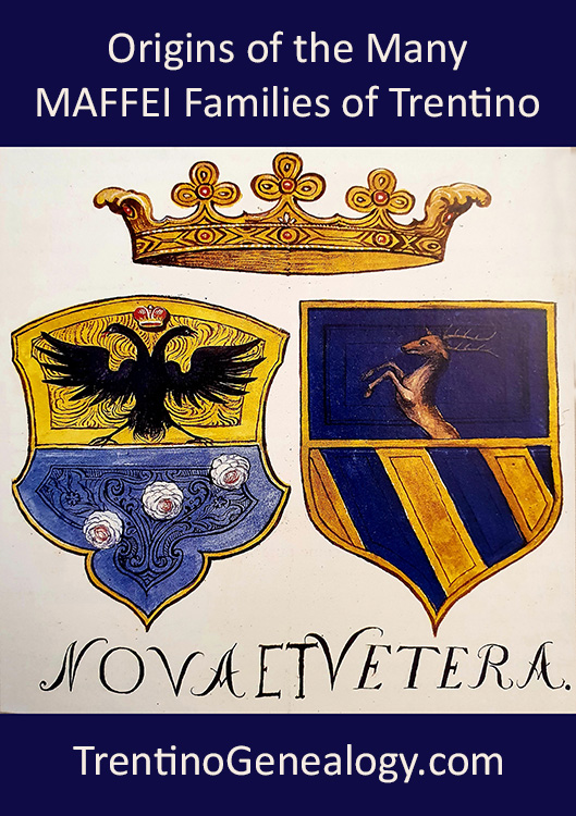 Origins of the Many MAFFEI Families of Trentino